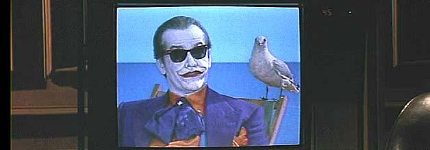 Beherrscht das Spiel mit den Medien: die Möwe auf Jokers Schulter.