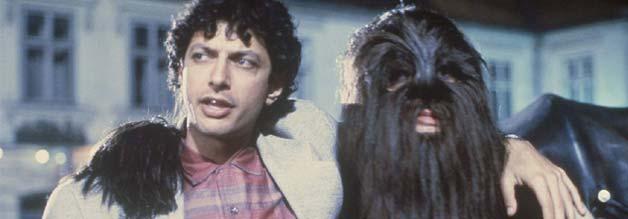 Han Solo und Chewbacca machen einen drauf.