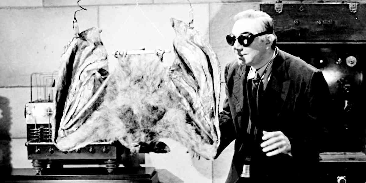 Interview mit Bela: Johnny Layton in The Devil Bat (1940)
